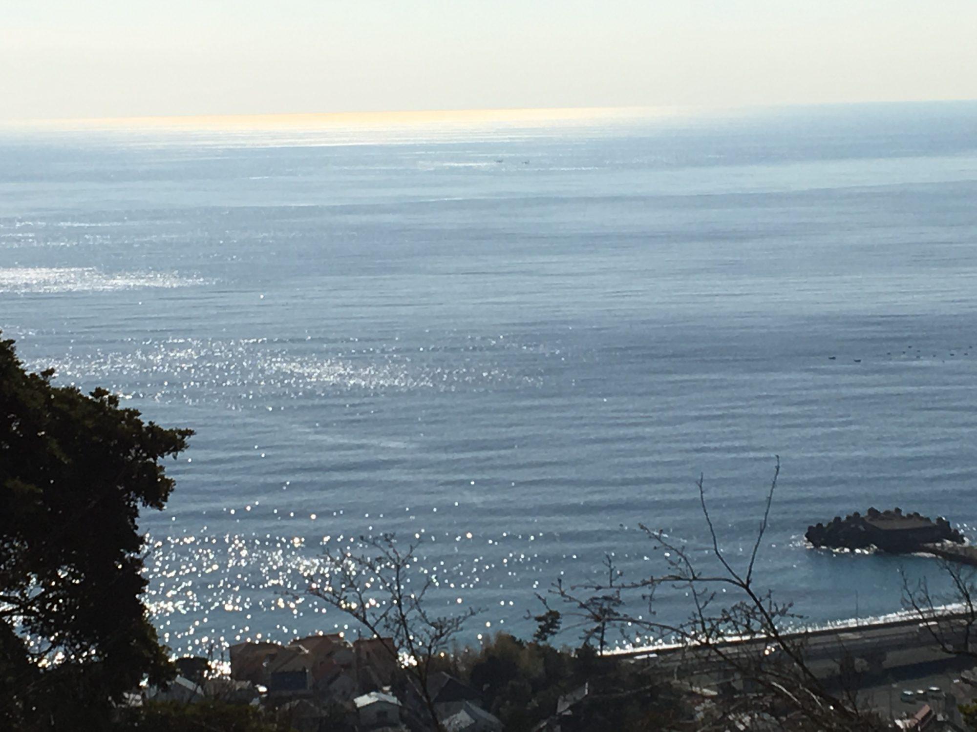 吾妻山から見た海