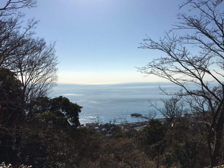 山頂から見た相模湾